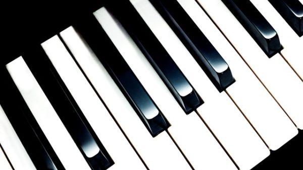 Igranje in poučevanje harmonike