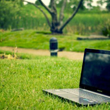 Zeleno delovno mesto